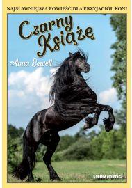 Czarny Książę e-book